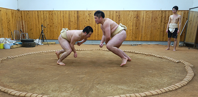 Tohoku University Sumo Club
