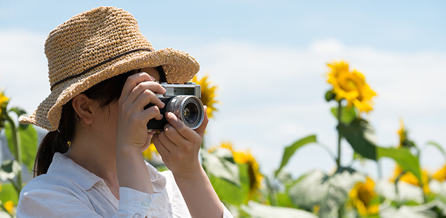 Tohoku University's Summer Photo Contest