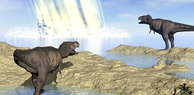 Soot may have killed off the dinosaurs and ammonites