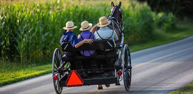 Why these Amish live longer and healthier: An internal 'Fountain of Youth'