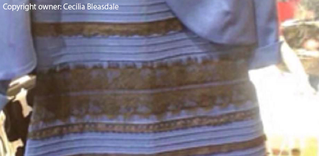Which piece resembles your color perception for #theDress image?